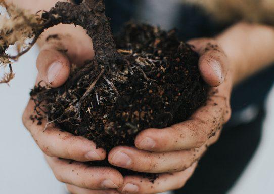 An Odd partnership:  God & Dirt